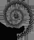 Tzveta Davinci Logo